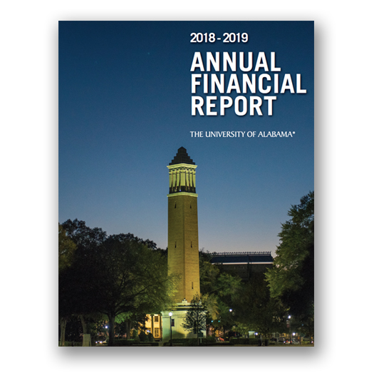 Annual Financial Report 2019