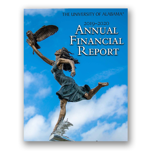 Annual Financial Report 2020